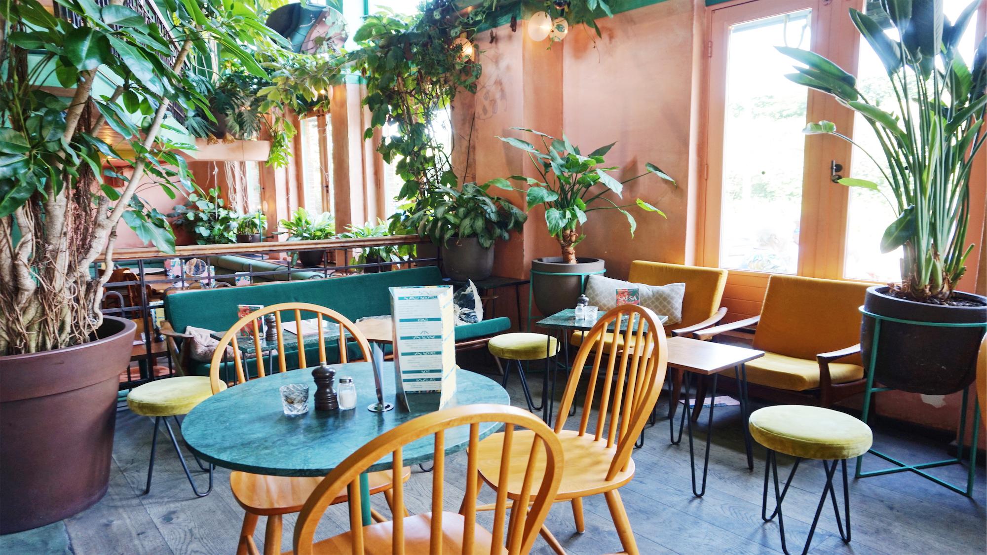 Bar Botanique interieur