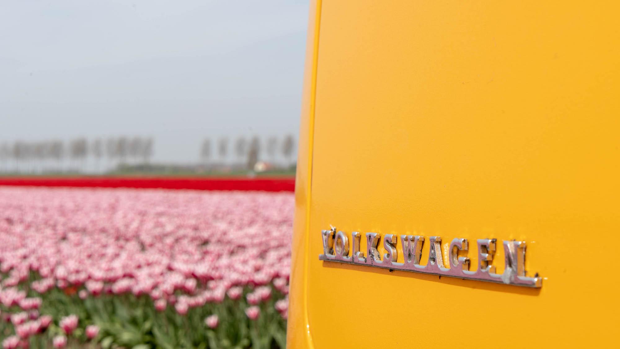 De Volkswagenbus tulpen