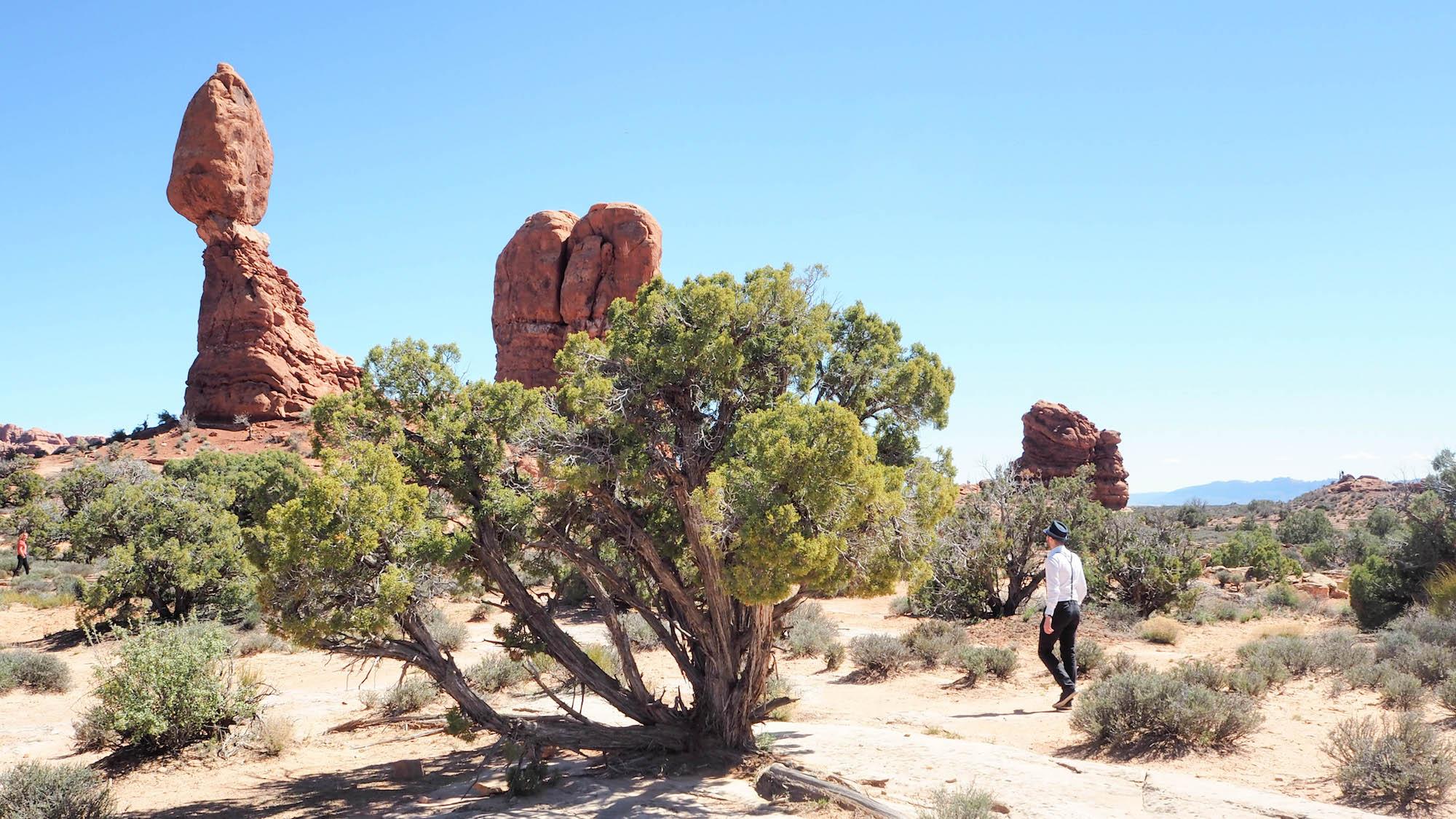 ontdek een landschap van contrasterende kleuren, landvormen en texturen, in tegenstelling tot alle andere in de wereld. Het park heeft meer dan 2000 natuurstenen bogen, naast honderden stijgende pinakels, massieve vinnen en reusachtige uitgebalanceerde rotsen. Dit wonderlandschap met rode rotsen zal je verbazen met zijn formaties, je verfrissen met zijn paden en je inspireren met zijn zonsondergangen.